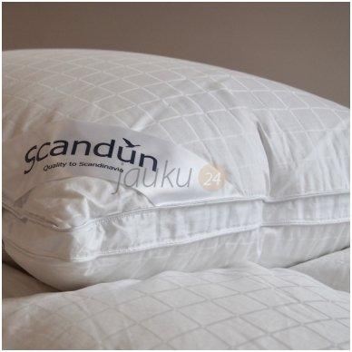 """100% žasų pūkų pagalvė """"SELENE"""""""