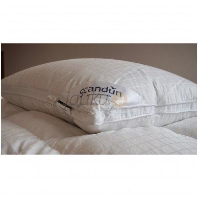 """100% žasų pūkų pagalvė """"SELENE"""" 2"""