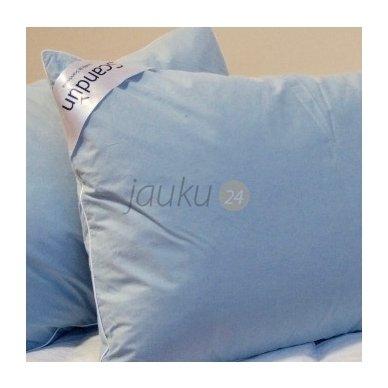 """Ančių pūkų (5%) - plunksnų pagalvė """"Terra"""""""