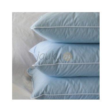 """Ančių pūkų (5%) - plunksnų pagalvė """"Terra"""" 2"""