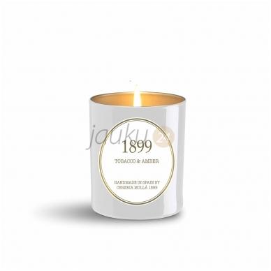 """Cereria Molla"" žvakė ""Tabacco&Amber"""